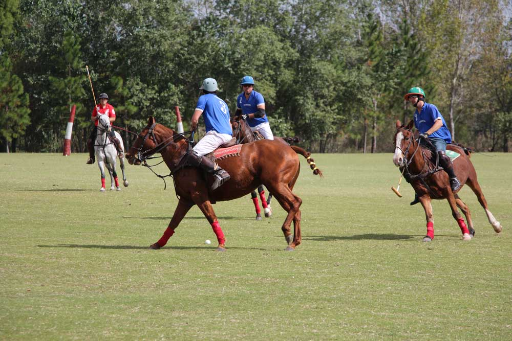 Fouls and Penalties in polo