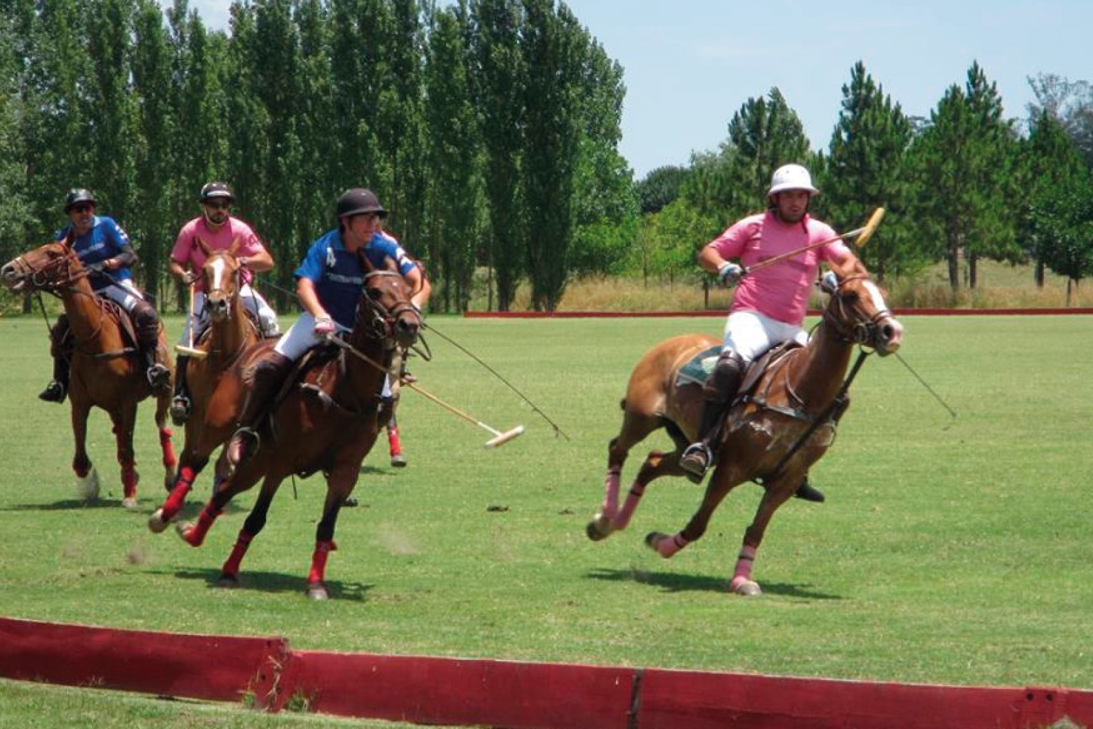 Argentina Polo Holidays – Argentina Polo Day offers a Polo