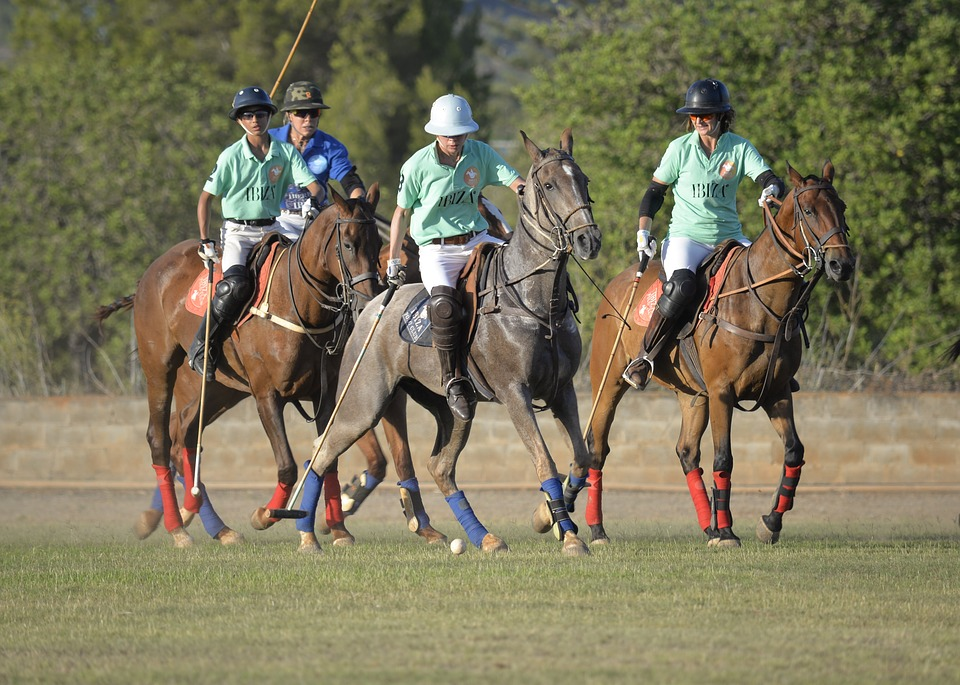injuries in Polo