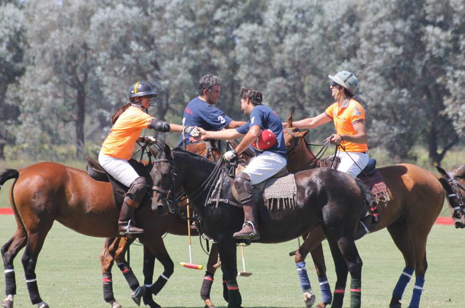 polo team sport